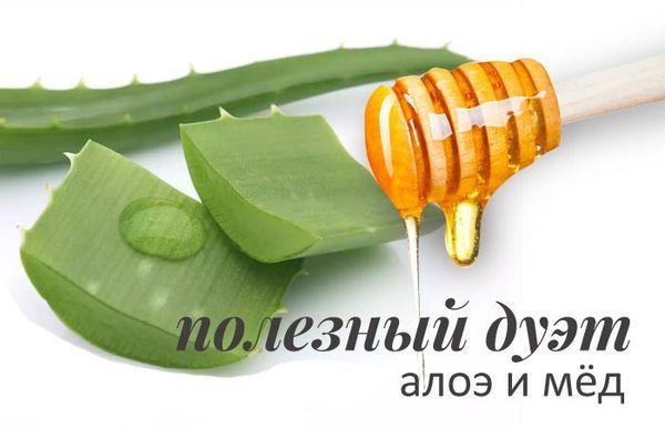 Листья алоэ и мед