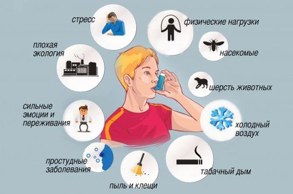 Провокаторы приступов бронхиальной астмы