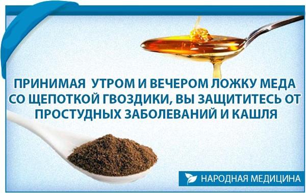 Польза гвоздики и меда