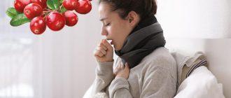 Лечение кашля клюквой