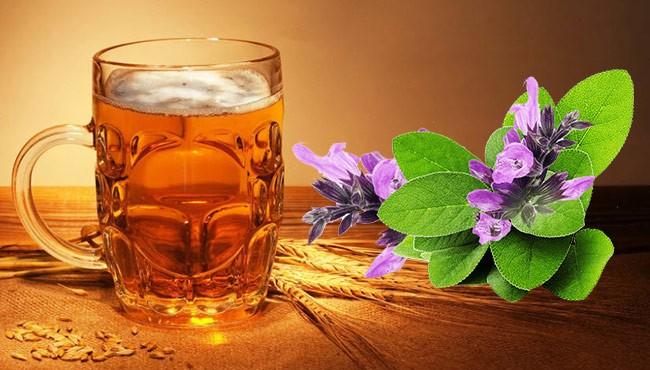 Шалфей с пивом
