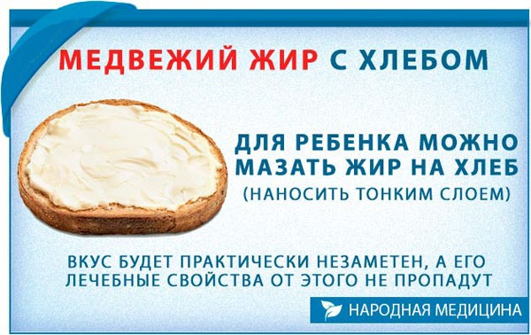 Медвежий жир с хлебом при кашле