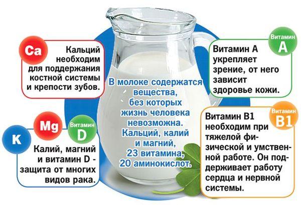 Какие витамины содержатся в молоке
