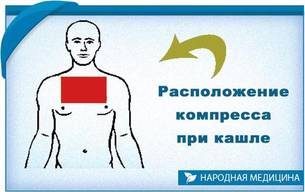 Расположение компресса при кашле