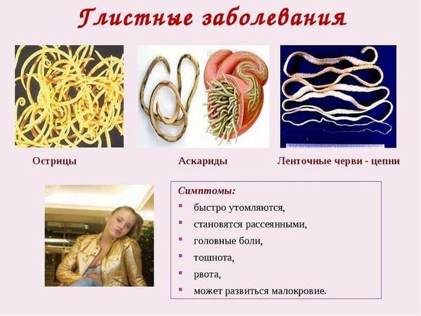 Глистные заболевания у человека