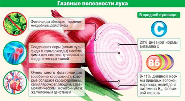 Витамины в луке